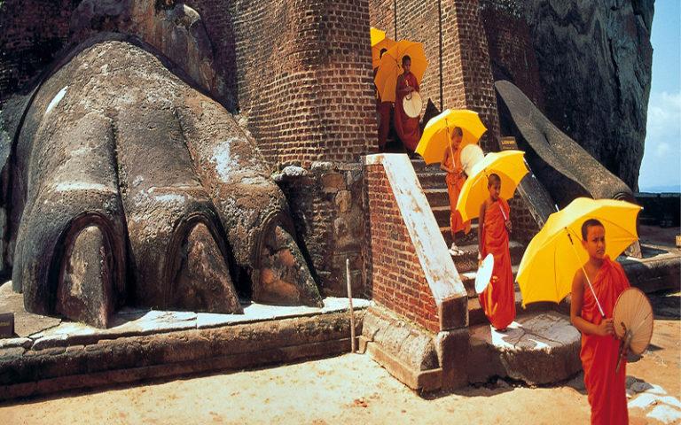 Sri Lankan Serenity